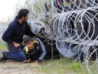 Пятнадцать мигрантов покинули центр временного содержания под Петербургом